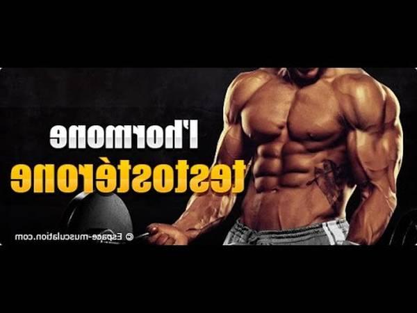 effet de la testostérone